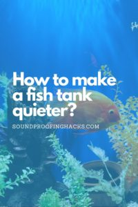 how to make a fish tank quieter pinterest1