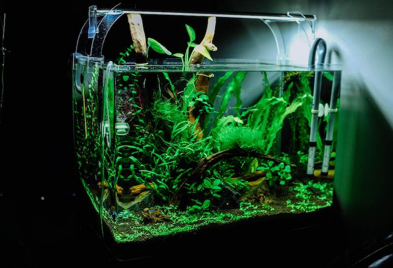 how to make a fish tank quieter