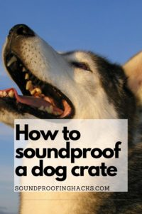 how-to-soundproof-dog-crate-pinterest-1