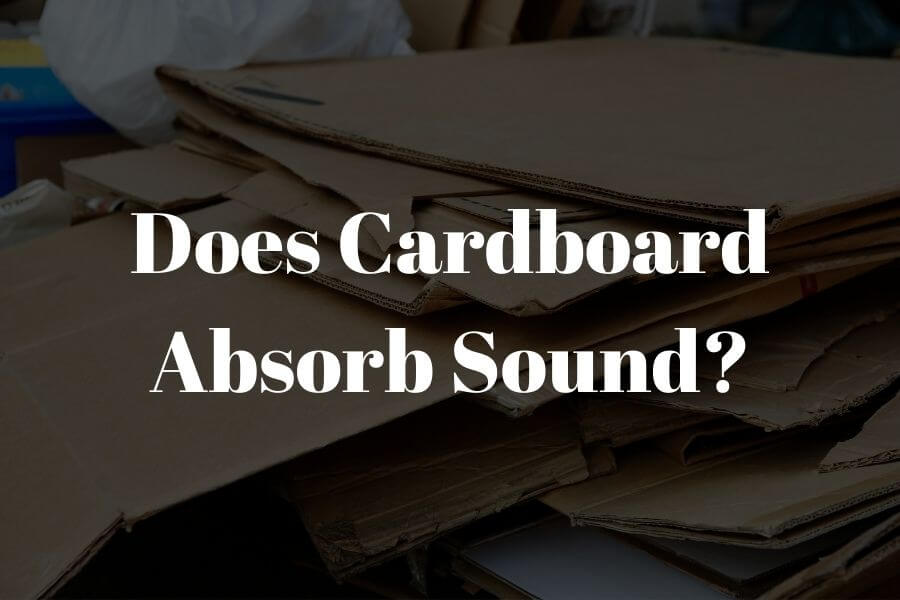 does cardboard absorb sound featured image